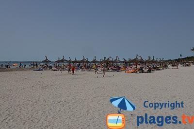 Plage à Port d'Alcudia à Majorque
