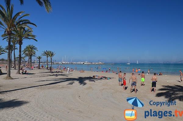Photo de la plage d'El Arenal à Majorque
