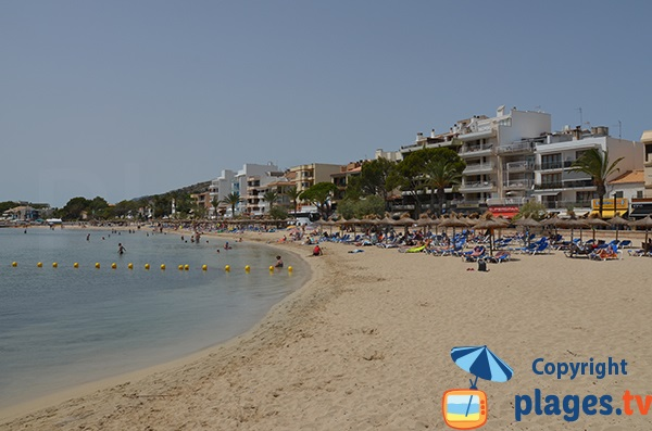 Plage à côté du Port de Pollença - Ile de Majorque