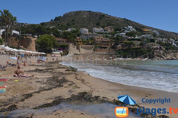 Algues sur la plage d'El Portet - Moraira