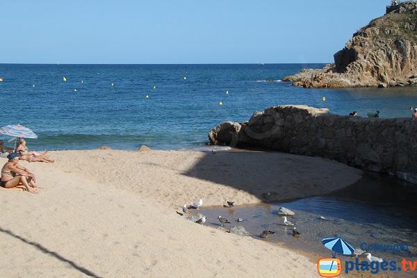 Coin tranquille sur la plage de Blanes
