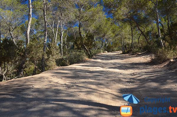 Access road to the Punta Galera - Ibiza