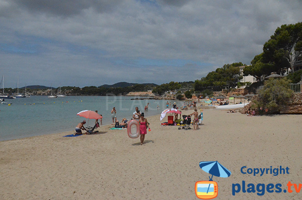 Photo de la plage de Punta Portals à Majorque