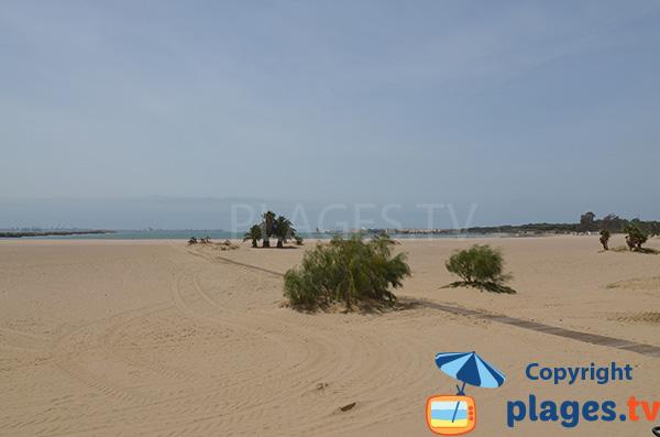 Photo de la plage de la Puntilla à El Puerto de Santa Maria en Espagne