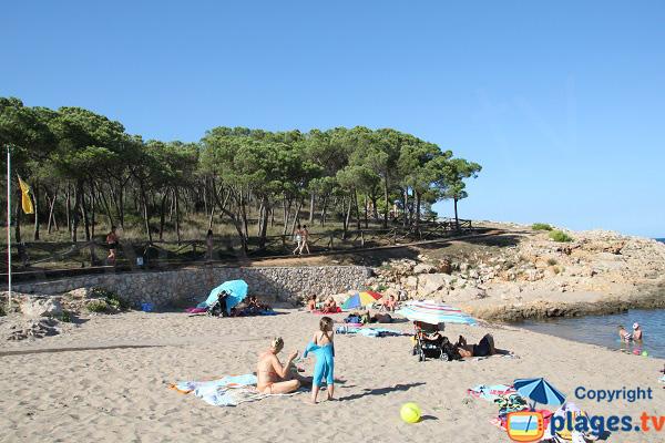 Extrémité de la plage de Rec del Moli - l'Escala