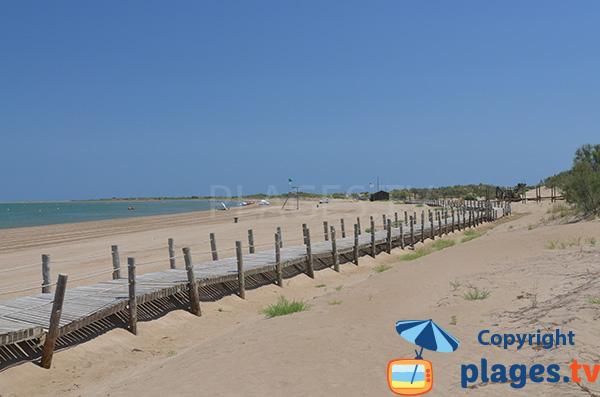 Grande plage de Riumar dans le delta de l'Ebre en Espagne