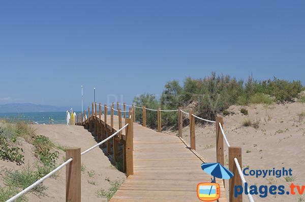 Accès à la plage de Riumar dans le delta de l'Ebre en Espagne