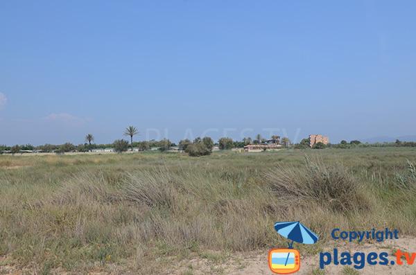 Environnement de la plage de la Rubina à Empuriabrava