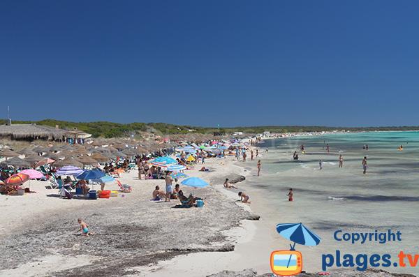 Belle plage à Ses Covetes et Es Trenc - Majorque