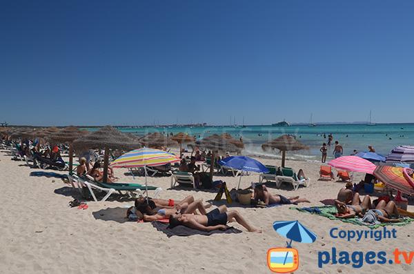 Plage privée à Ses Covetes - plage de s'Arenal d'en Tem - Majorque
