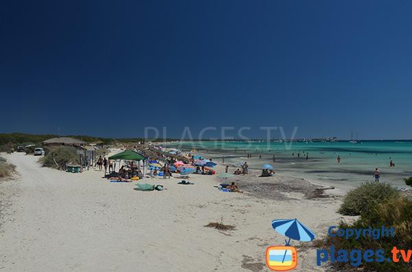 Photo de la plage de s'Arenal d'en Tem - Ses Covetes - Majorque
