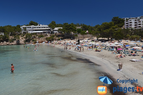 Belle plage à Portinatx - Ibiza