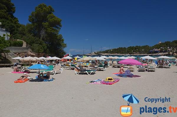 Plage de Portinatx en juin - Ibiza