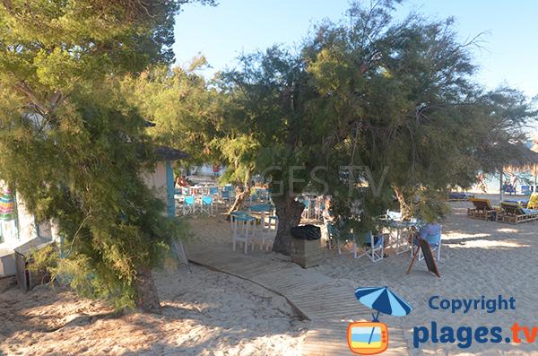 Restaurant sur la plage de S'Arenal - Portocolom