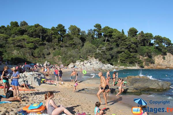 Photo de la crique de Sa Boadella à Lloret de Mar en Espagne