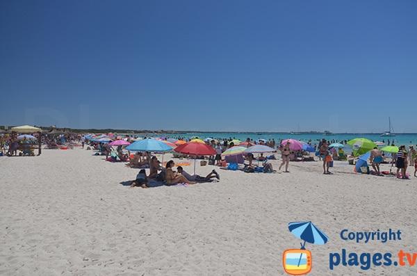 Grande plage à Sa Rapita - Majorque - Baléares