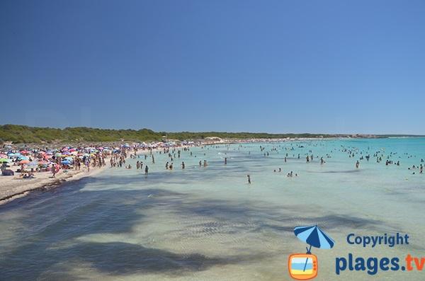 Vue sur la plage de Ses Covetes - Majorque