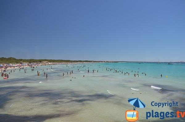 Grande plage au sud de Majorque - Sa Rapita