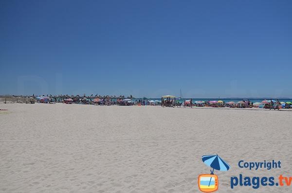 Photo de la plage de Sa Rapita à Majorque