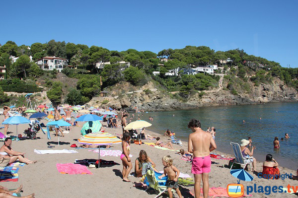 Cove of Begur - Sa Riera