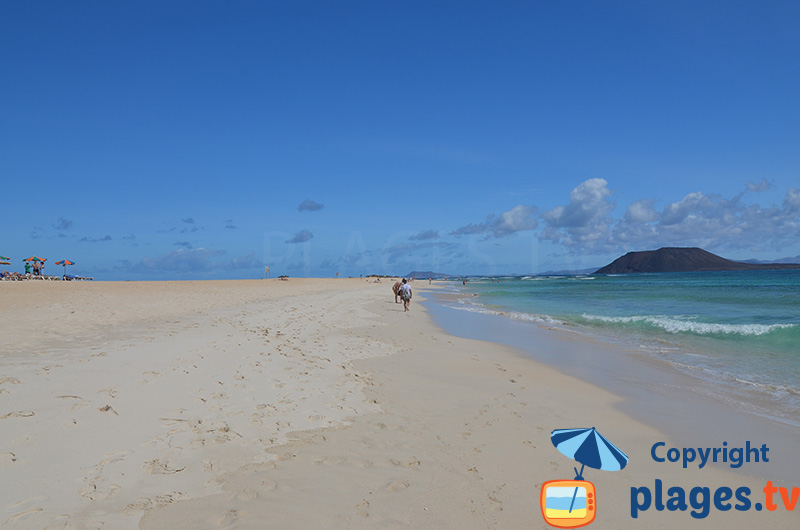 Plage de sable blanc de Corralejo à Fuerteventura - Canaries