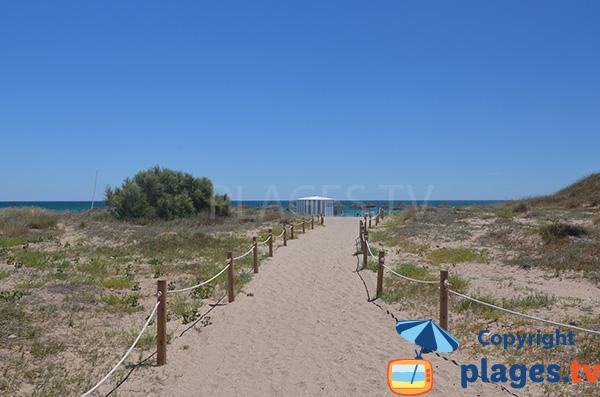 Accès à la plage de Saler - Valence