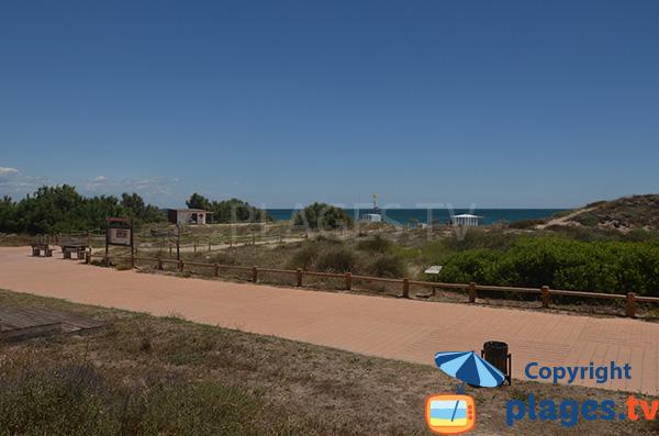 Promenade le long de la plage de Saler