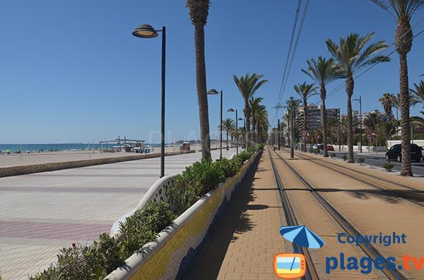 Tram au niveau de la plage de San Juan à Alicante