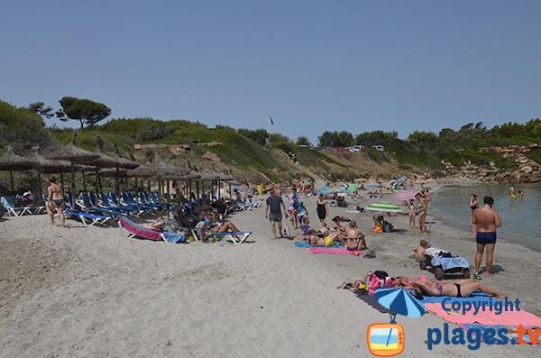 Transats sur la plage de Sant Joan à Alcudia