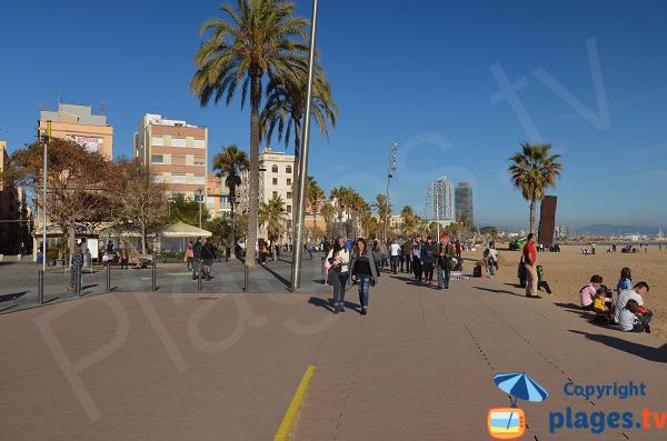 Place del Mar à côté de la plage de Sant Miquel - Barcelone