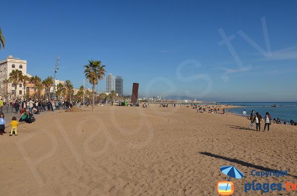 Photo de la plage de Sant Miquel à Barcelone