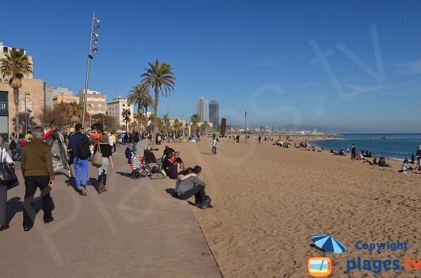 Promenade le long des plages de Barcelone - Sant Sebastia