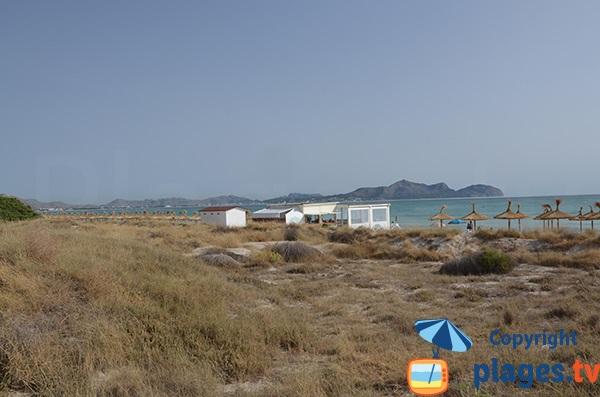 Photo de la plage sauvage de Can Picafort - Majorque - Baléares