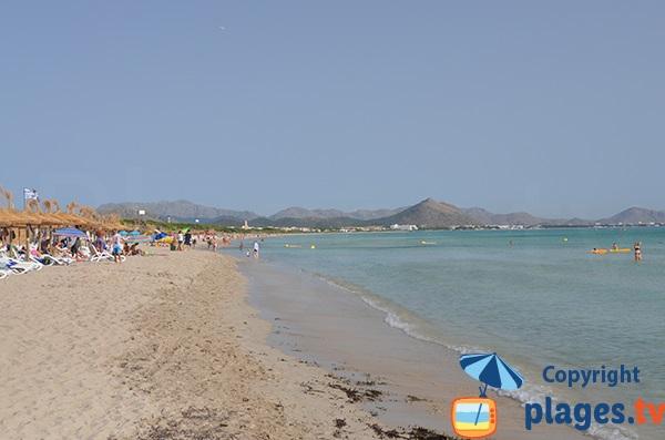 Dunes et plage de Santa Margalida - Majorque - Baléares