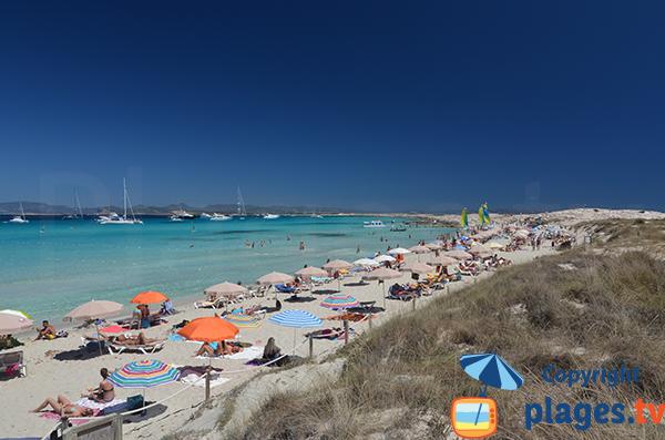 Location de matelas sur la plage de Ses Illetes à Formentera