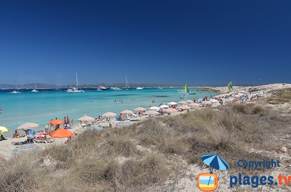 Photo de la plage de Ses Illettes à Formentera - Espagne