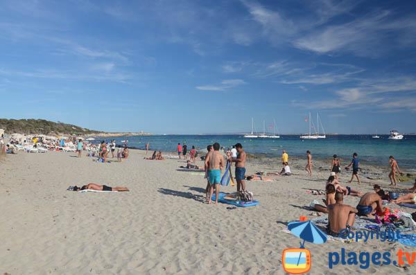 Grande plage à Ibiza - Les Salines