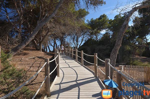 Accès à la plage de Ses Salines à Ibiza