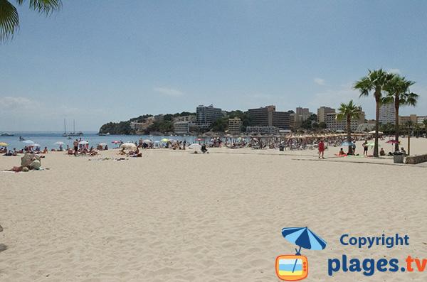 Plage de Son Matias à Palmanova à Majorque