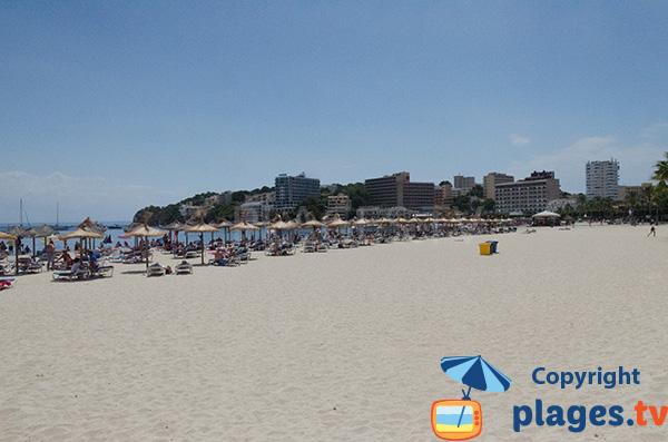 Location de matelas sur la plage de Son Matias à Palmanova
