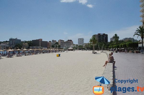 Promenade piétonne le long de la plage de Son Matias à Palmanova à Majorque