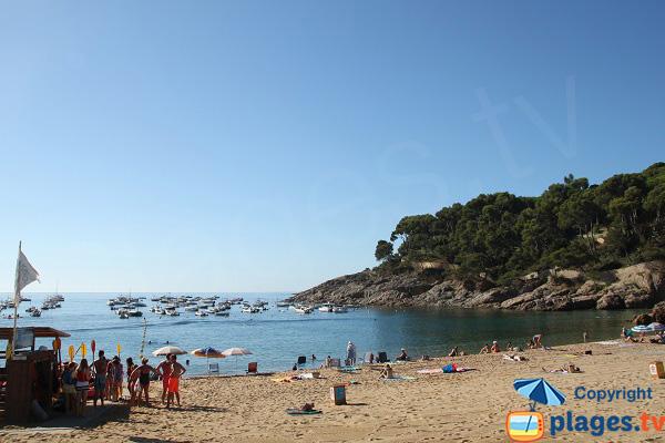 Photo de la plage de Tamariu à Palafrugell - Espagne
