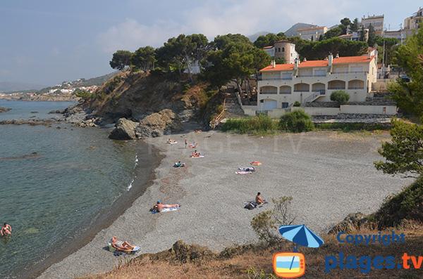 Photo de la plage de Tonyines à Llança en Espagne