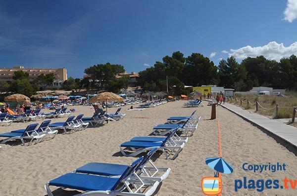 Location de chaises longues sur la plage de Port des Torrent - Ibiza