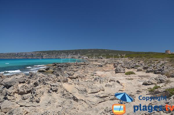 Environnement de la plage de Tramuntana à Es Calo - Formentera