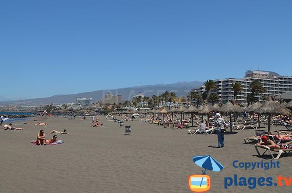 Hôtels à proximité de la plage de Las Americas