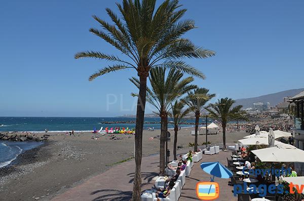 Bars et restaurants à proximité de la plage de Troya - Playa Las Americas