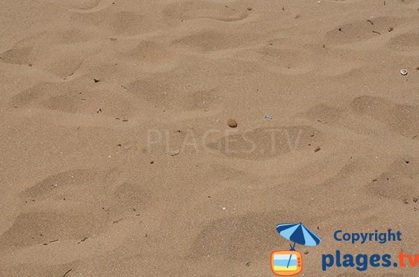 Plage de sable fin au sud d'Alicante - Urbanova