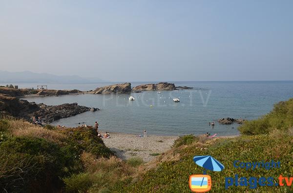 Photo de la plage de Vaques à El Port de Selva en Espagne