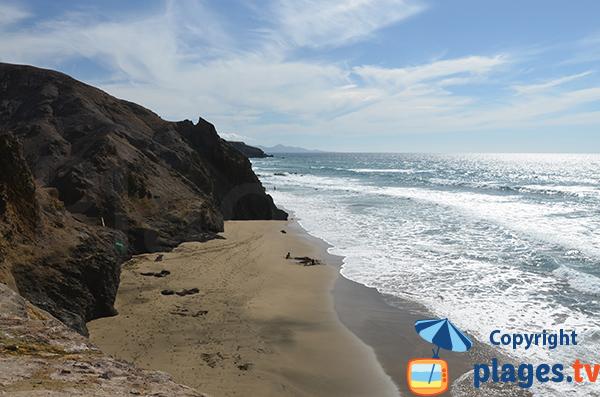 Photo de la plage de Viego Rey à Fuerteventura - Canaries